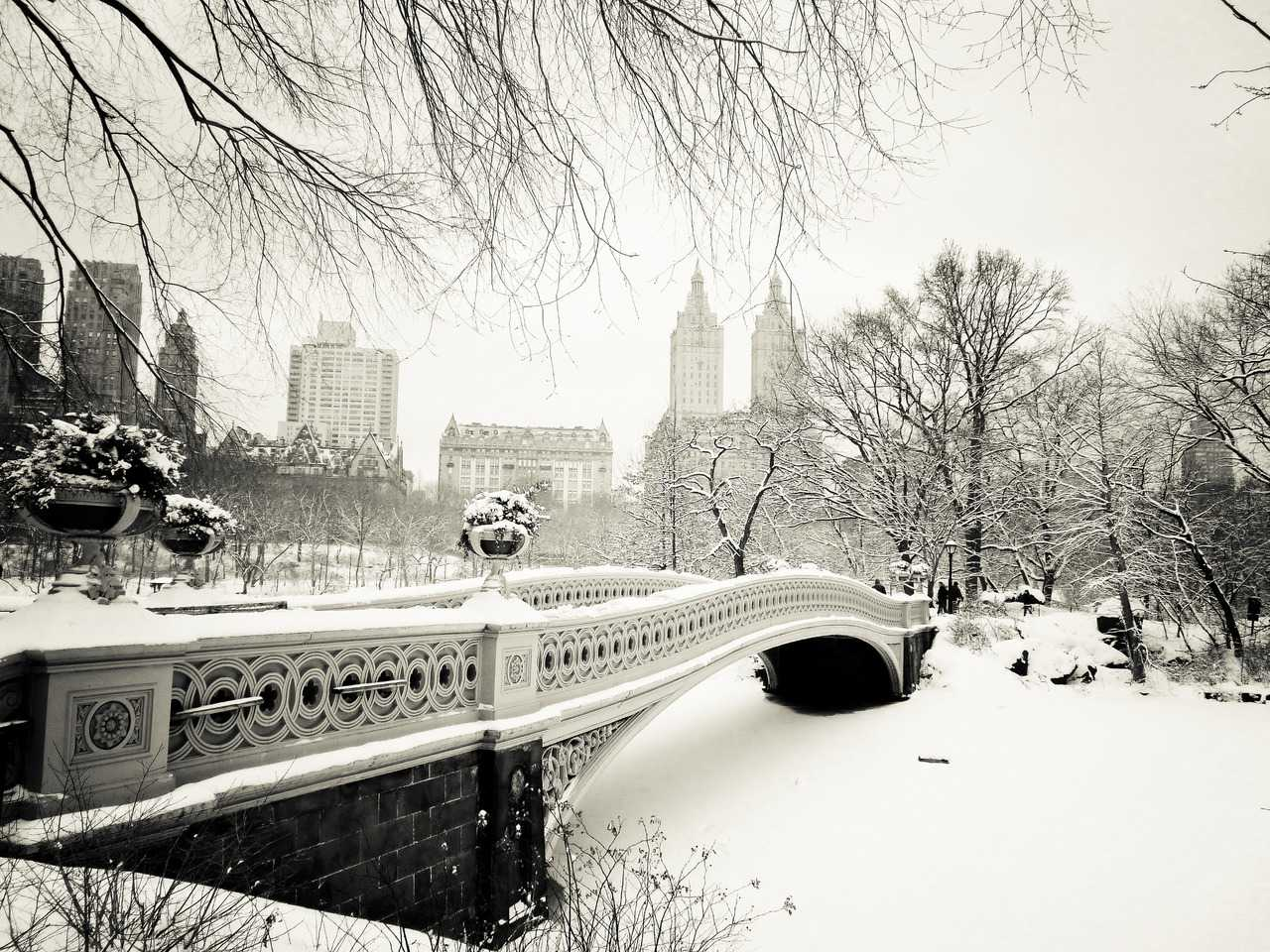 New York Winter Wallpaper The Impact : 5 Things ...
