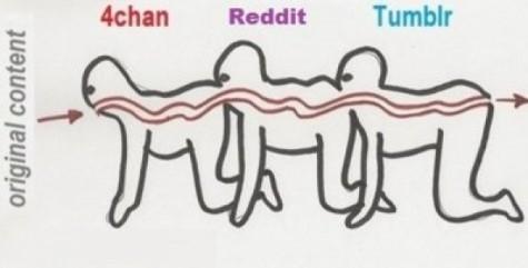 Tumblr vs Reddit vs 4Chan