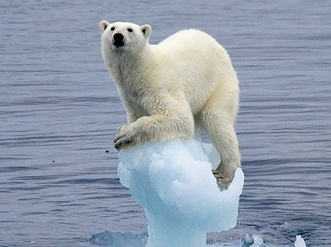 Global Warming Poses Abrupt Impact