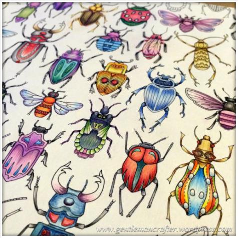 Meet Fashion Bug