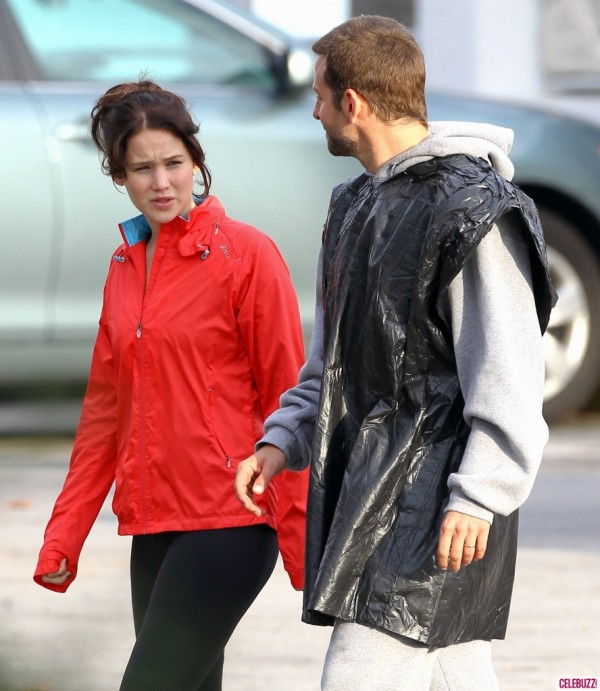 �silver linings playbook� � a family that had everything
