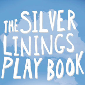 """""""Silver Linings Playbook"""" - A family that had everything going for them  but allowed the little things in life to get in the way."""