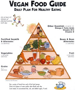 Tips on Maintaining a Vegan Diet in College
