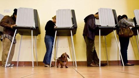 vote-KQED-20131104