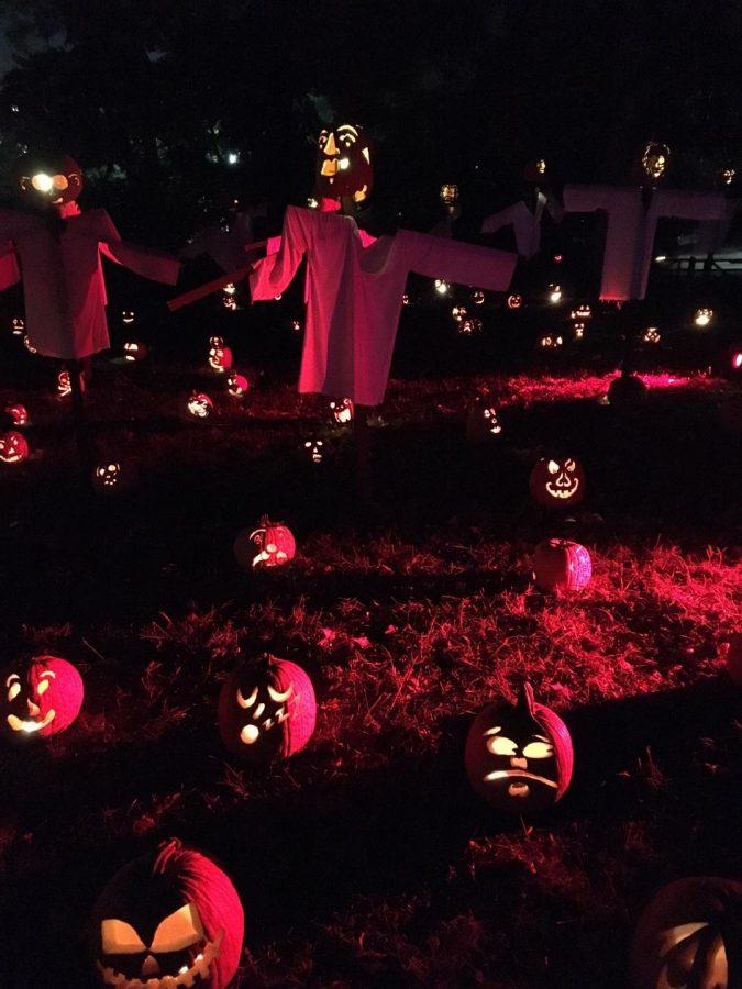 Feel the Pumpkin Power!