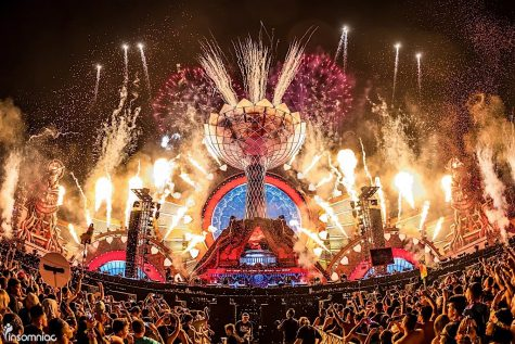 10 Things To Expect During An EDM Festival
