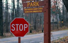 The Significance of Ridge Road Park