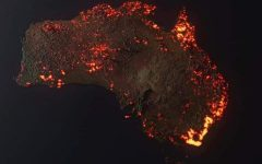 The World Actively Responds to Australia's Tragic Fires