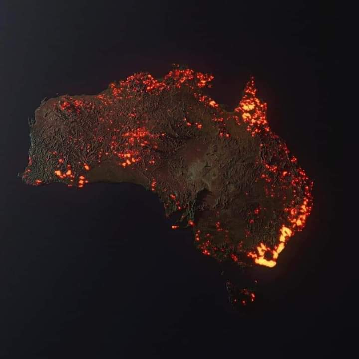 The World Actively Responds to Australia's Tragic Fires