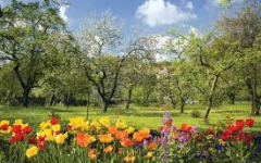 10 Reasons Why Spring Is The Best Season EVER