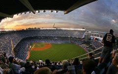 My Love for Baseball