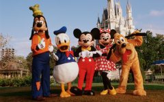 Top 10 Rides in Disney World