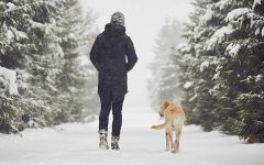 Have Your Pet's Prepared for this Ruff Winter